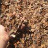 Pušų žievės mulčias, 20-40 mm, 80 l