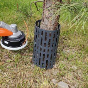 medžių kamienų apsauga